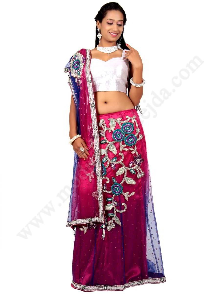 Indian women wedding dress a Sari, 1021549